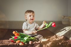 Retrato de um rapaz pequeno bonito que guarde uma tulipa vermelha e sorria O menino senta-se em uma cobertura marrom Brilho de Su fotografia de stock
