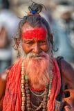 Retrato de um sadhu India, Rajasthan Fotografia de Stock