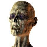 Retrato de um zombi ilustração do vetor