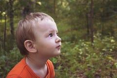 Retrato de uma criança pequena na floresta do verão fotos de stock royalty free