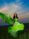 Retrato de uma jovem mulher bonita no fundo do por do sol Imagens de Stock Royalty Free