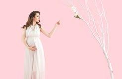 Retrato de uma mãe grávida moreno fotografia de stock
