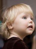 Retrato de uma menina agradável. Imagens de Stock