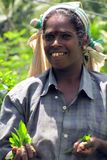 Retrato de uma menina do Tamil que escolha o chá em plantações imagem de stock royalty free