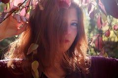 Retrato de uma menina foxy bonita nova com parte superior violeta, mulher impetuosa atrativa bonita, gengibre, ruivo, sob um arbu imagem de stock royalty free