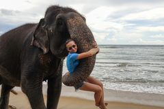 Retrato de uma moça com um elefante no fundo de uma praia tropical do oceano fotos de stock