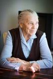 Retrato de uma mulher adulta Foto de Stock Royalty Free