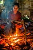 Retrato de uma mulher do papuan de um tribo do korowai pelo fogo Foto de Stock