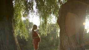 Retrato de uma mulher gravida que aprecie os raios do outono passado do sol vídeos de arquivo