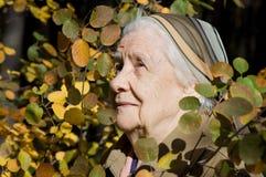 Retrato de uma mulher mais idosa ao ar livre imagens de stock