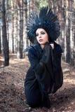 Retrato de uma mulher misteriosa bonita na floresta imagem de stock