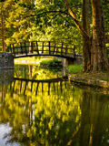Retrato de uma ponte de madeira em um parque Fotografia de Stock