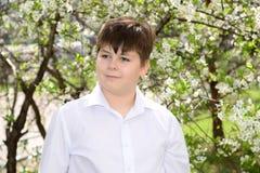 Retrato de un adolescente del muchacho en un fondo de cerezas florecientes Fotos de archivo libres de regalías