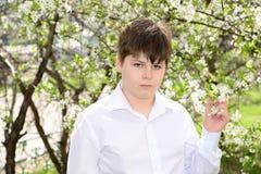 Retrato de un adolescente del muchacho en un fondo de cerezas florecientes Fotos de archivo