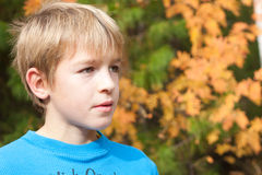 Retrato de un adolescente en el bosque del otoño. Imagen de archivo libre de regalías