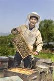 Retrato de un apicultor del hombre Fotos de archivo libres de regalías