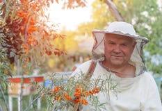 Retrato de un apicultor en el colmenar Fotografía de archivo libre de regalías
