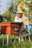 Retrato de un apicultor en el colmenar en la colmena con las abejas Imagen de archivo libre de regalías