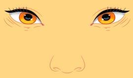 Retrato de un aspecto del asiático del niño libre illustration