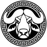Retrato de un búfalo en un marco con un meandro. Fotografía de archivo libre de regalías