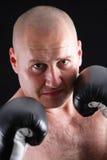 Retrato de un boxeador de sexo masculino Imágenes de archivo libres de regalías