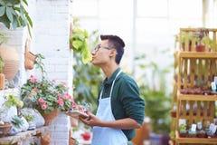 Retrato de un florista de sexo masculino joven feliz en tienda Imagen de archivo libre de regalías