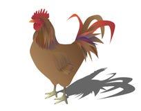 Retrato de un gallo libre illustration