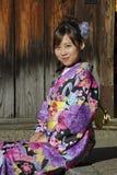 Retrato de un geisha Imágenes de archivo libres de regalías