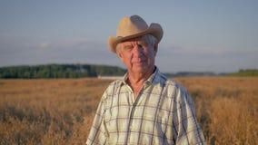 Retrato de un granjero caucásico mayor del hombre en campo de trigo en la puesta del sol almacen de metraje de vídeo