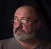 Retrato de un hombre adulto con una barba gris y los vidrios fotografía de archivo libre de regalías