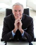 Retrato de un hombre de negocios mayor sonriente imagen de archivo