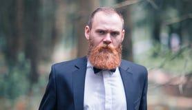Retrato de un hombre de negocios acertado en un traje y del lazo en un fondo del bosque Fotografía de archivo