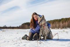 Retrato de un instructor de la muchacha y de un lobo gris en un campo nevoso fotos de archivo