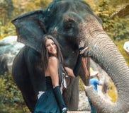 Retrato de un instructor sonriente con un elefante Imagen de archivo