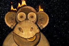 Retrato de un mono del fuego de los Años Nuevos Foto de archivo