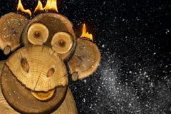 Retrato de un mono del fuego de los Años Nuevos Imagen de archivo