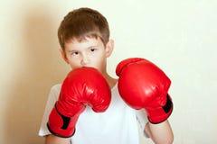 Retrato de un muchacho en guantes de boxeo rojos Fotos de archivo