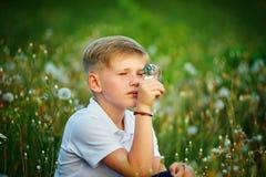 Retrato de un muchacho en un campo con los dientes de león El sentarse en colores de un campo Imagenes de archivo