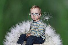 Retrato de un niño en un fondo del diente de león fotos de archivo libres de regalías