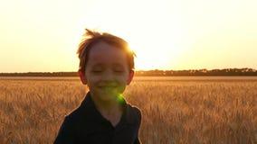 Retrato de un ni?o de risa feliz Un niño pequeño lindo corre contra la perspectiva de un campo de trigo durante puesta del sol y almacen de metraje de vídeo