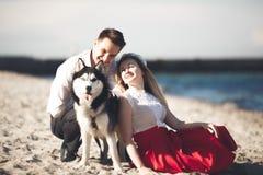 Retrato de un par feliz con los perros en la playa imagenes de archivo