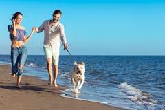 Retrato de un par feliz con los perros en la playa foto de archivo