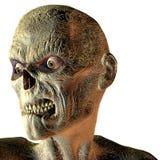 Retrato de un undead Imagen de archivo libre de regalías