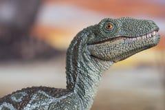 Retrato de un velociraptor en un mundo jurásico imagenes de archivo