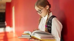 Retrato de una colegiala hermosa con los vidrios y dos coletas Una muchacha se coloca en un pasillo de la escuela, sostiene los l almacen de video