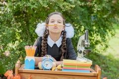 Retrato de una colegiala joven hermosa que se sienta en un escritorio Fotos de archivo