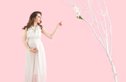 Retrato de una madre embarazada morena Fotografía de archivo