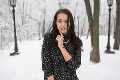 Retrato de una morenita hermosa en parque del invierno Fotos de archivo