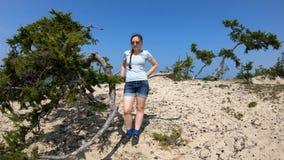 Retrato de una muchacha en la playa por un árbol almacen de metraje de vídeo