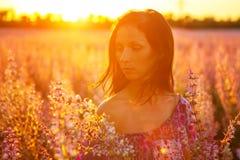 Retrato de una muchacha en un campo floreciente en el sol en la puesta del sol, el concepto de relajación imagenes de archivo